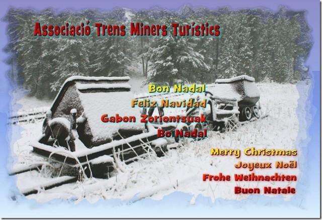 Nadal_2013_Trens_Miners